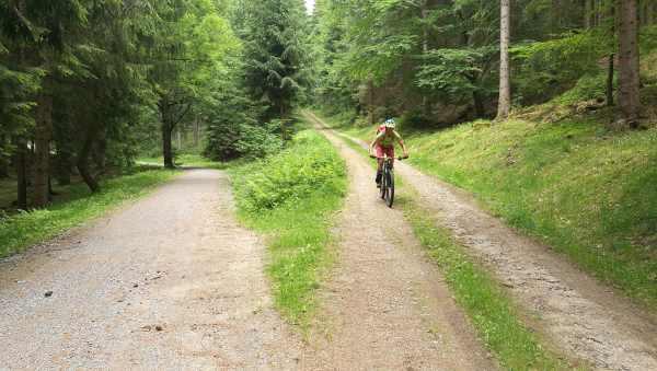Forststraße - Mountainbike Route Stoneman Erzgebirge