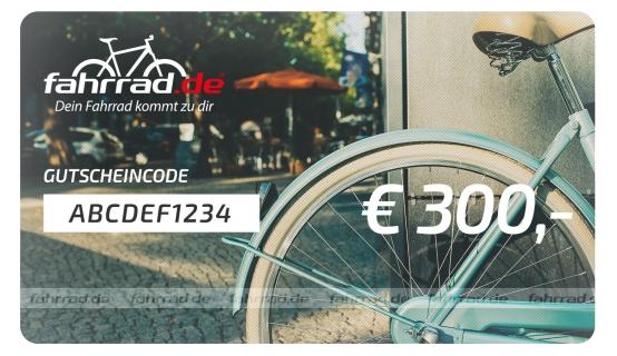 Top Fahrrad-Blog 1. Platz - Preis