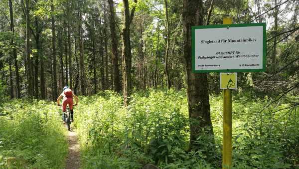 Trail auf dem Stoneman - MTB Tour Erzgebirge