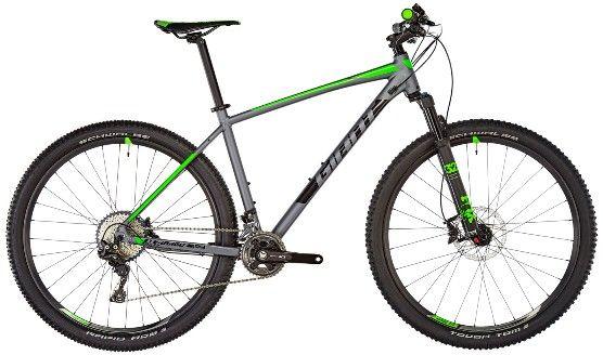 Das XC-Bike Terrago 1 von Giant