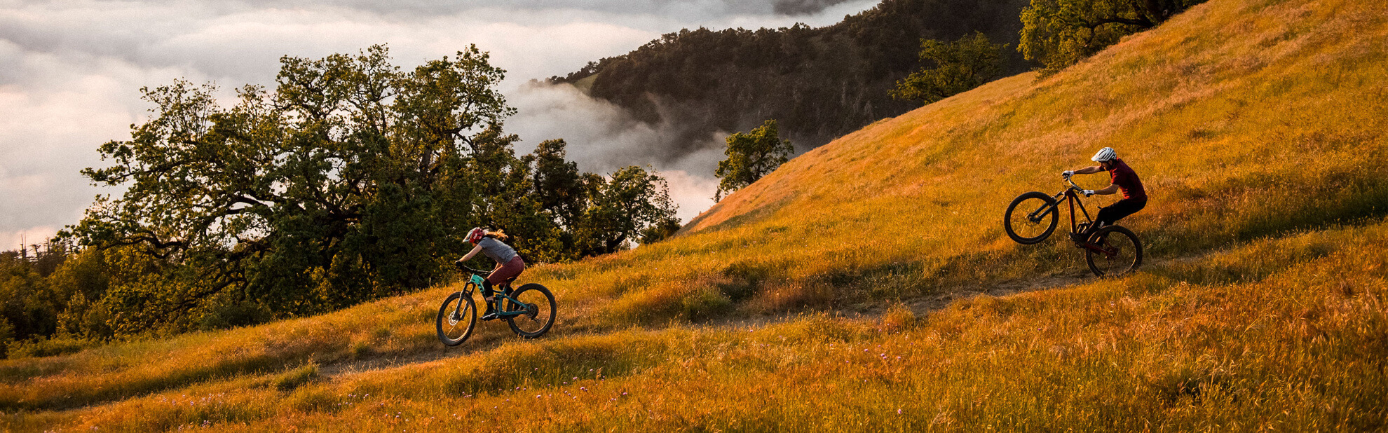 Trek bei fahrrad.de Online