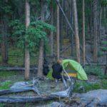 Zelt aufbauen - Bikepacking - Radreise in Kanada